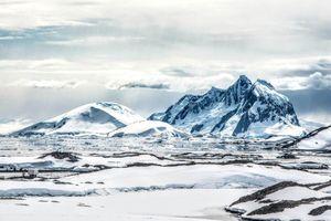 Kích thước nếp cuộn não bị giảm đi ở những nhà thám hiểm vùng cực