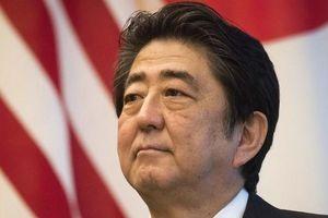 Phần lớn doanh nghiệp Nhật không ủng hộ Thủ tướng Abe