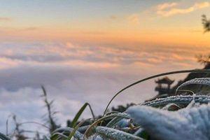 Lớp phủ trắng xóa trên đỉnh Fansipan không phải băng tuyết mà là sương muối