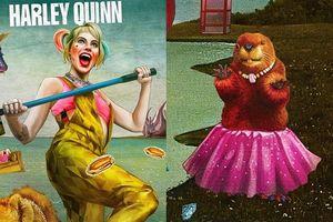 'Birds of Prey': Tìm hiểu về chú hải ly 'váy hường' trong bộ poster sặc sỡ mới nhất