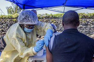 Lên kế hoạch lập ngân hàng dự trữ vaccine phòng virus Ebola