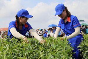 Quảng Ninh xây dựng nông thôn mới kiểu mẫu