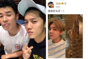Lộc Hàm và Trần Hách đăng hình trêu chọc nhau trên weibo: Cư dân mạng đùa giỡn cả hai còn ngọt ngào như tình nhân