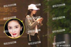 Dương Mịch bị bắt quả tang vào khách sạn cùng tình trẻ Ngụy Đại Huân