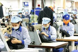 Kim ngạch xuất khẩu dệt may đạt 39 tỷ USD trong năm 2019