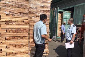 TP.HCM: Bắt giữ lô hàng gỗ xẻ xuất khẩu, trốn thuế gần 3 tỷ đồng
