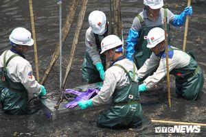 JEBO chây ì cung cấp hồ sơ, tài liệu về công nghệ Nano làm sạch nước sông Tô Lịch