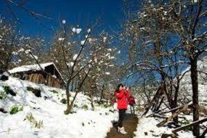 Thời tiết 11/12: Vùng núi cao Bắc Bộ duy trì rét hại dưới 3 độ, có băng giá và sương muối