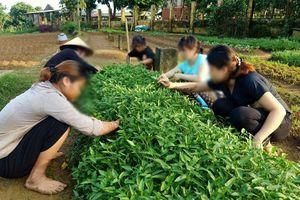 Cơ sở cai nghiện ma túy số 2 Hà Nội: Chất lượng chăm sóc đặt lên hàng đầu