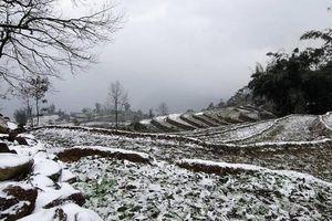 Thời tiết ngày 12/12: Vùng núi cao có băng giá và sương muối