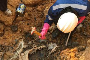 Chủ tịch Hà Nội yêu cầu làm rõ vụ chôn trộm chất thải nguy hại