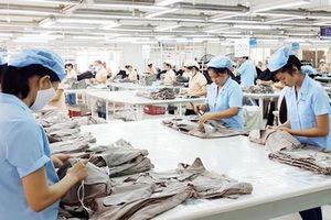 Kim ngạch xuất nhập khẩu cán mốc 500 tỷ USD