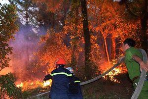 Đốt cành cây làm cháy gần 168ha rừng, thiệt hại hơn 3 tỷ đồng