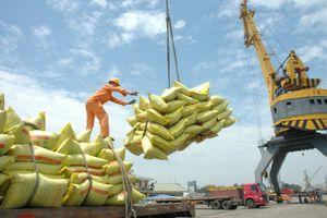 Giá gạo Thái tăng cao - cơ hội cho gạo Việt