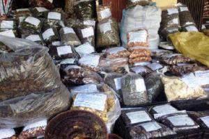 Khởi tố vụ án buôn lậu dược liệu 'đội lốt' hoa quả khô