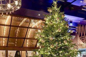 Chiêm ngưỡng cây thông Noel đắt nhất thế giới trị giá hơn 367 tỷ đồng