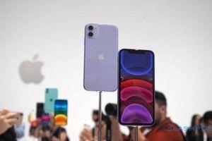 iPhone 11, 11 Pro và 11 Pro Max đồng loạt giảm giá dịp cuối năm