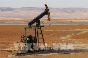 Giá dầu đi lên nhờ kỳ vọng vào thỏa thuận thương mại 'Giai đoạn 1' giữa Mỹ và Trung Quốc