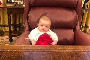 Hình ảnh gây sốt của cô cháu gái út Tổng thống Trump tại nhà Trắng
