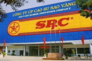 Nhóm cổ đông Hoành Sơn đã chiếm 3/5 ghế nóng tại Cao su Sao Vàng
