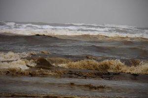 Đã có kết quả phân tích mẫu nước biển chuyển màu bất thường làm dân lo lắng