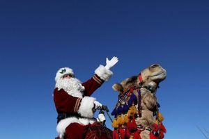 'Ông già Noel' cưỡi lạc đà tặng quà Giáng sinh