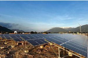 Trung Nam Group dẫn đầu lĩnh vực năng lượng sạch