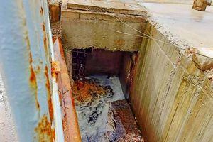 Doanh nghiệp xả thải khiến nước biển đổi màu lại bị phạt 75 triệu