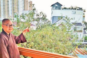 Về ngôi chùa cổ Giác Lâm bị rao bán