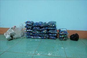 Giấu hàng chục kg pháo lậu trong xe tải chở cám, gạo