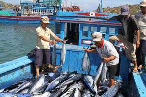 EC ghi nhận nỗ lực gỡ 'thẻ vàng' thủy sản của Việt Nam
