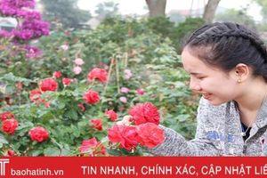 Những làng hoa ở Hà Tĩnh bung nụ đón tết