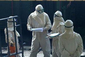 Bộ Y tế chỉ đạo kiểm soát chặt, tránh nguy cơ lây virus qua cửa khẩu