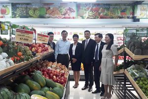 Đà Nẵng: Thêm một trung tâm thương mại khai trương hoạt động