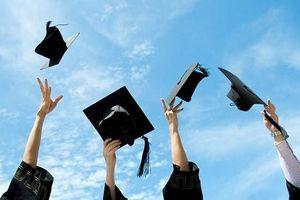 '90-100% sinh viên có việc làm, nhưng làm việc gì?'