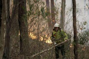 Australia thiệt hại hàng trăm triệu USD vì cháy rừng