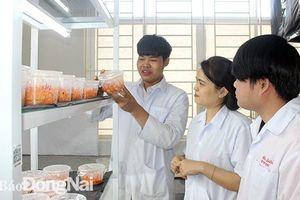 Tiếp nối truyền thống học sinh, sinh viên Việt Nam