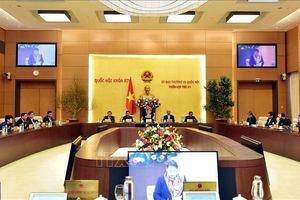 Phiên họp thứ 41 UBTVQH: Bổ sung quy định nâng cao trách nhiệm cơ quan trình dự án Luật