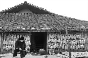 Trăm năm làng ngói âm dương