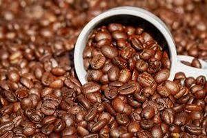 Giá cà phê hôm nay 14/1: Giảm mạnh so với phiên giao dịch hôm qua