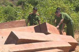 Đắk Lắk: Khởi tố bắt tạm giam 3 cán bộ thuộc Công ty TNHH một thành viên lâm nghiệp huyện Ea Kar