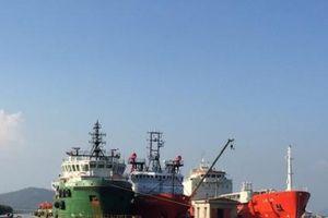 Nhiều sai phạm nghiêm trọng tại CTCP Đóng tàu và Dịch vụ dầu khí Vũng Tàu