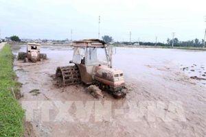 Bộ trưởng Nguyễn Xuân Cường: Tiết kiệm nhưng phải đảm bảo đủ nước gieo cấy vụ Đông Xuân