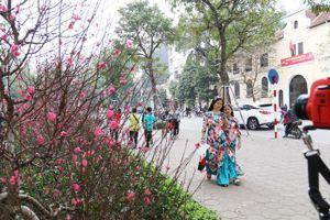 Nhận định mới nhất về xu thế thời tiết Hà Nội dịp Tết Canh Tý