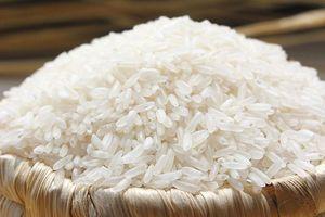 Hỗ trợ gần 4.900 tấn gạo cho 6 tỉnh