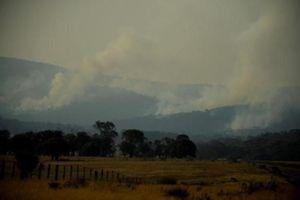 Thảm họa cháy rừng ở Australia: Ảnh hưởng nghiêm trọng cả lịch sử và cuộc sống hiện tại