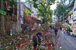 Chợ hoa Hàng Lược và những ký ức muôn năm cũ