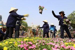 Hé lộ đường hoa Nguyễn Huệ trước ngày khai mạc