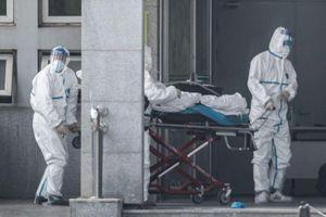 Số nạn nhân virus cúm lạ ở TQ có thể lớn hơn nhiều so với báo cáo