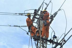 PC Bình Định: Bảo đảm nguồn điện phục vụ Tết Canh Tý 2020